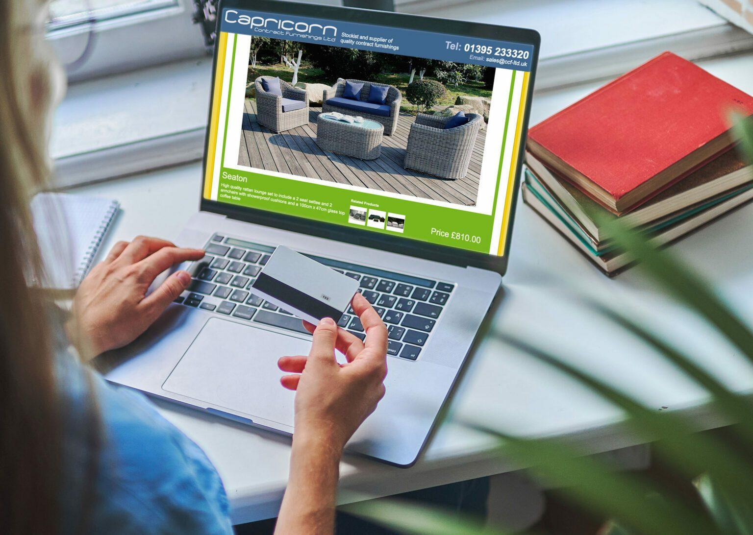 Designosaur Ecommerce Website Design Banner Capricorn 2048x1456px
