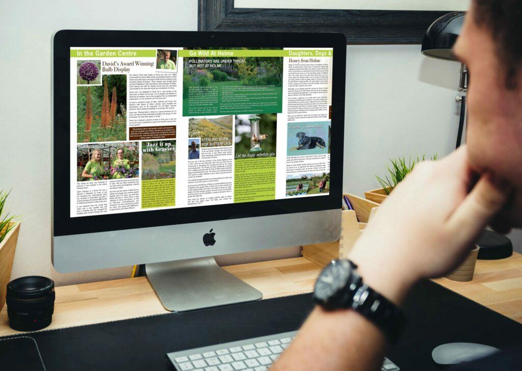 Designosaur Newsletter Design Banner V2 2048x1456px