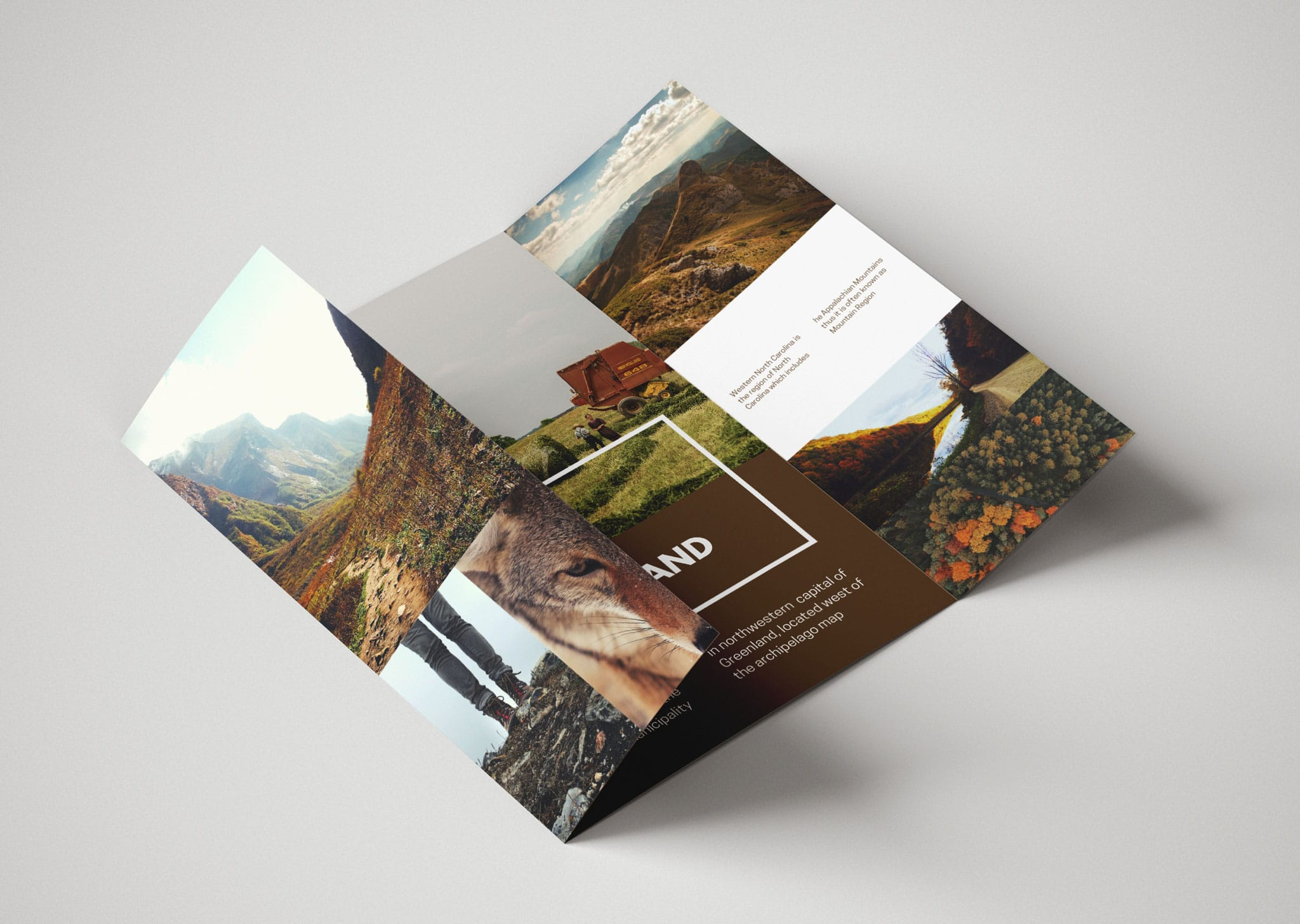 A Z Design And Print Services Gate Fold Leaflet Printing